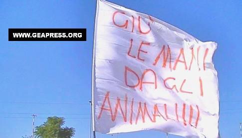 bandiera animalista