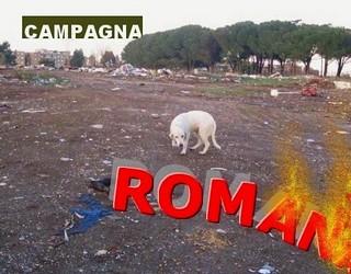 Campagna Romana