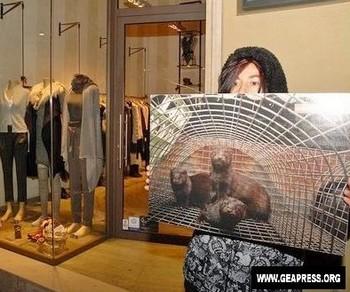 manifestazione contro pellicce